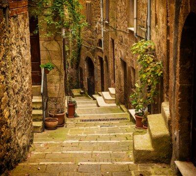 Fotomural Calle estrecha de la ciudad de tufo medieval Pitigliano con plantas verdes y escaleras de adoquines, viajes Italia antecedentes de la vendimia