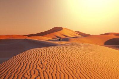 Fotomural Caminata en el desierto