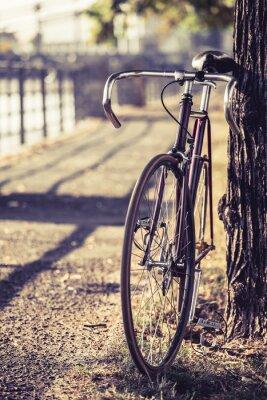 Fotomural Camino de la bici de la bicicleta fija del engranaje