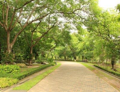 Fotomural Camino de piedra en el Parque Verde
