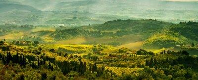Fotomural Campos de la Toscana