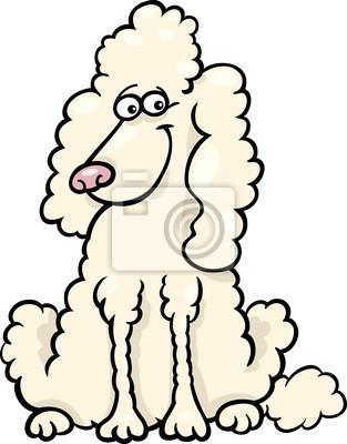 Caniche ilustracin de dibujos animados de perro fotomural