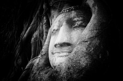 Fotomural Cara pacífica y tranquila de Buda tallada en piedra antigua