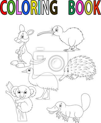 Cartoon australia libro para colorear animales fotomural ...