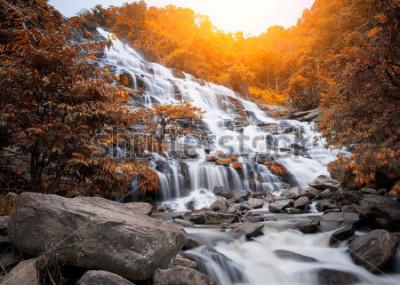 Fotomural Cascada de Mae Yah, hermosa cascada en el bosque de otoño, provincia de Chiang Mai, Tailandia