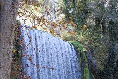 Fotomural Cascada en otoño lleno de hojas