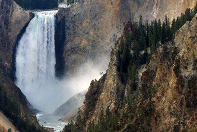 Fotomural Caso de Yellowstone
