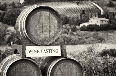 Fotomural cata de vinos
