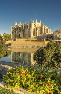 Fotomural Catedral de Mallorca