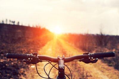 Fotomural Ciclismo de montaña cuesta abajo descendente rápido en bicicleta. Vista desde