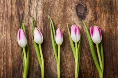 Fotomural Cinco tulipanes de color rosa sobre fondo de madera
