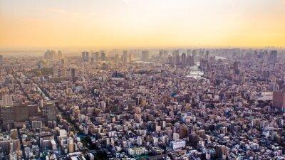 Fotomural Citiscape de Tokio al atardecer, Japón