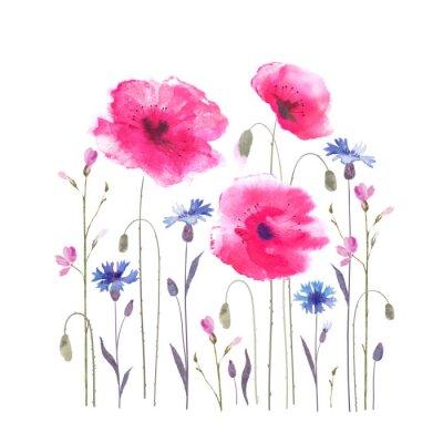 Fotomural Claro floral con amapolas y acianos.