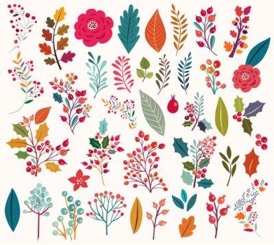 Fotomural Colección de flores y hojas