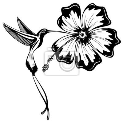 Colibri Tattoo Blanco Y Negro Sfb