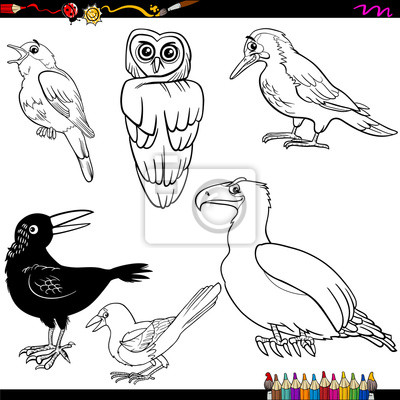 Colorear dibujos animados aves fotomural • fotomurales ruiseñor ...