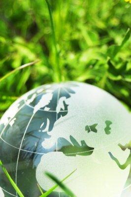 Fotomural concepto de la ecología