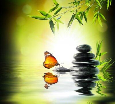 Fotomural concepto delicado exclusivo - mariposa en el agua en el jardín