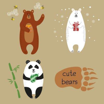 Fotomural Conjunto de osos lindos. Colección de ilustraciones vectoriales de dibujos animados de oso pardo, oso polar y panda.