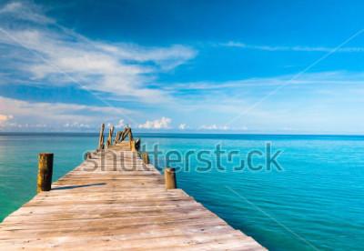 Fotomural Contemplar la vida en el mar es fácil