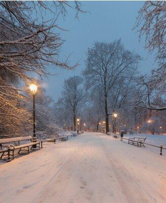 Fotomural Cracovia, Polonia, callejón en los lagos del parque Planty en la mañana durante nieve.