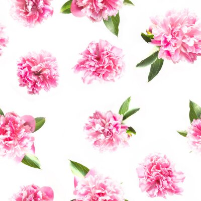 Fotomural Creative seamless pattern of pink peony flower on white. Minimal flat lay. Top view.