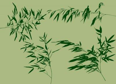 Fotomural Cuatro ramas de bambú verde conjunto ilustración