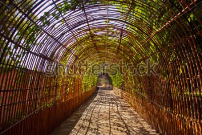 Fotomural Curva de bambú túnel de madera en un parque