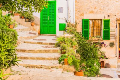 Fotomural Decoración típica de la planta en un viejo pueblo mediterráneo rústico