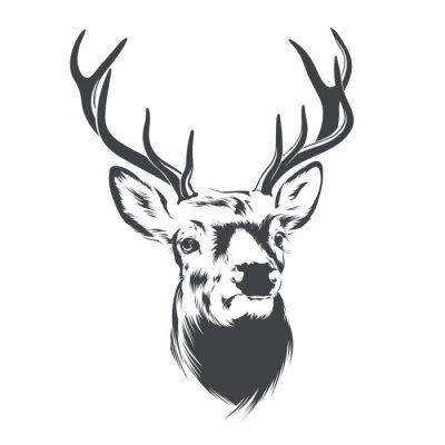 Fotomural Deer Head