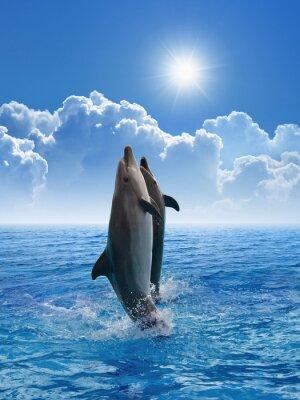 Fotomural Delfines saltando