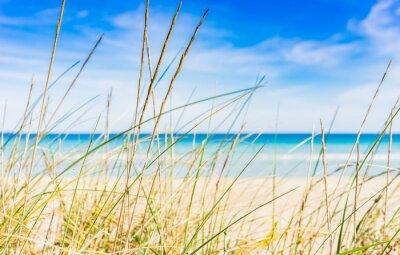 Fotomural descanso resto de playa idílica