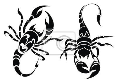 Escorpion Tatuaje diseño del tatuaje del escorpión fotomural • fotomurales crawly