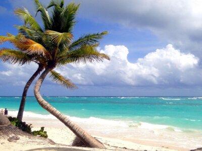 Fotomural Dream Beach
