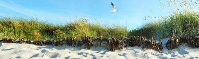 Fotomural dunas de la playa - Panorama