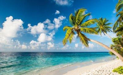 Fotomural Einsamer Strand en Malediven