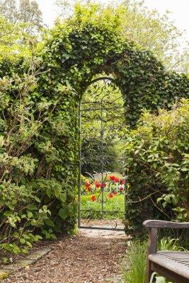 Fotomural Eisernes Gartentor en Buchsbaumhecke