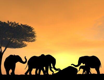 Fotomural Elefantes Morn sus muertos al atardecer, una escena muy tierna.