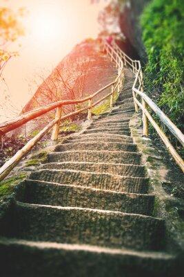 Fotomural Escaleras en la montaña