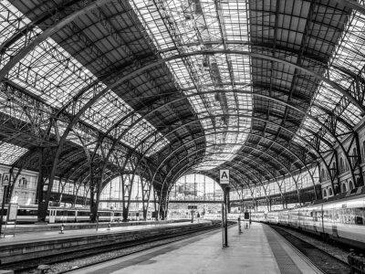 Fotomural Estación de Francia, Barcelona