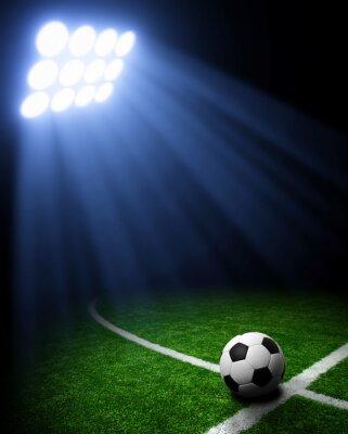 Fotomural Estadio de fútbol