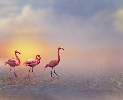 Fotomural Flamingo Aves