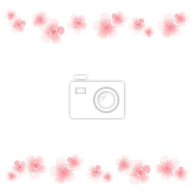 Flores De Color Rosa Claro Aisladas Sobre Fondo Blanco Flores