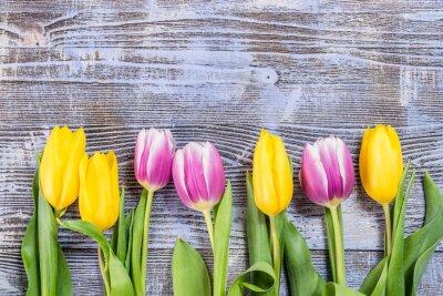 Fotomural Flores de tulipán en el telón de fondo de madera