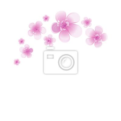 Flores Violetas Púrpuras Aisladas En El Fondo Blanco Flores