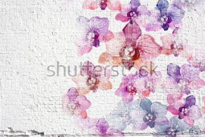 Fotomural Fondo blanco abstracto del estuco de la pared del grunge. Textura de pared de estuco con coloridas acuarelas de flores orquídeas.