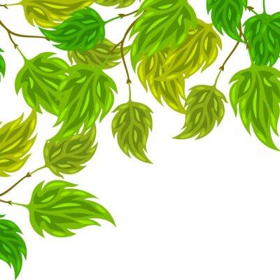 Fotomural Fondo de hojas verdes estilizadas para tarjetas de felicitación