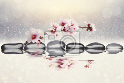 Fotomural Fondo de las flores de las almendras