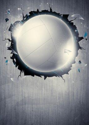 Fotomural Fondo de Voleibol