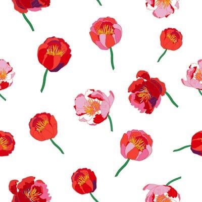 Fotomural Fondo floral sin fisuras. Aislado flores rojas sobre fondo blanco. Ilustración del vector.